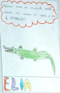 Un coccodrillo