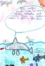 Uno squalo